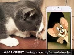 Artist Brings Cartoon Characters To Life With Just His iPhone