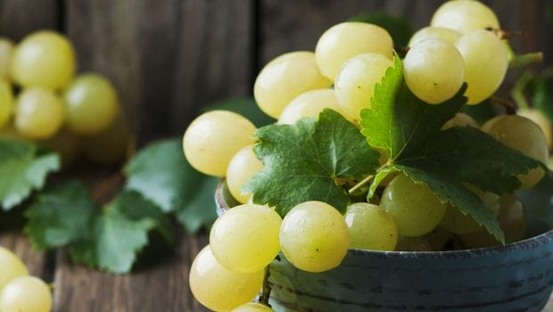 Add Grapes to Your Daily Fruit Bowl to Lower Colon Cancer Risk