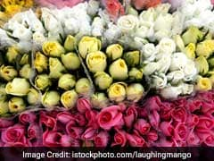 Red Roses May Be Passe This Valentine's Day: Survey