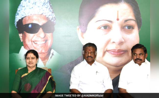 VK Sasikala, O Panneerselvam And Their Educational Qualifications