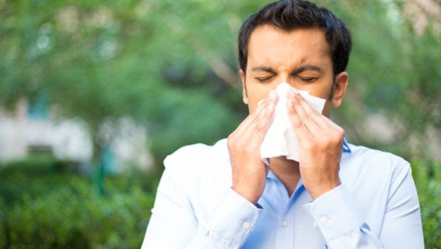 How to Stop Sneezing: 6 Home Remedies for Instant Relief