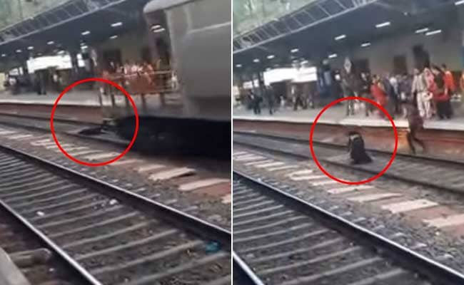 Woman Gets Run Over By Goods Train And Survives. 3 Million Views On Video
