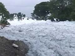 Why Do Bengaluru's Foamy Lakes Need Foreign Help, Ask City Experts