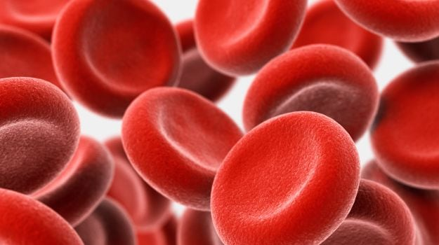 Aplastic Anaemia: Everything You Should Know About This Serious Blood Disorder