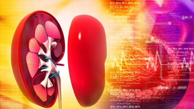 Chronic Kidney Patients' Urine Can Predict Their Risk of Death
