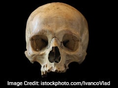 Bengal Man Arrested With 15 Skulls In Nepal