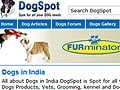 Now, a dating site for Delhi dogs