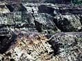 Report on illegal Goa mining presents crisis for Chief Minister