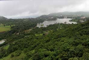 Forest cover in India down by 367 sq km: Environment Ministry