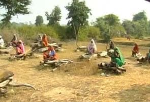 Madhya Pradesh land row: Farmers sit on pyres, threaten mass suicide