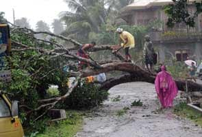 Six dead as Typhoon Bopha lashes Philippines
