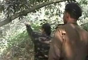 Woman, who was found hanging from tree in Bihar, was not gang-raped, reveals post-mortem report