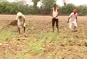 Now, CAG finds lapses in one of five cases of government's farmer loan-waiver scheme