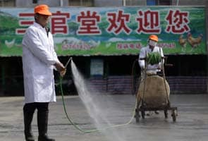 China's bird flu response shows new openness
