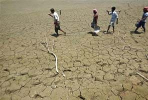 For India's drought-hit states, on-track Monsoon may be too late
