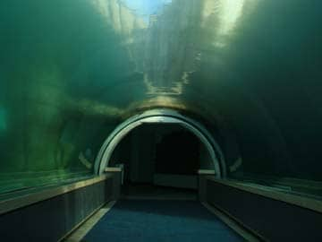 china plans to build worlds longest underwater tunnel