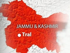 Suspected militants kill sarpanch, his son in Jammu and Kashmir