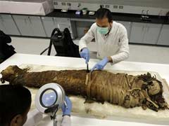 Israel To Display Ancient Mummy With Modern Day Afflictions
