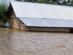 Nearly Four Lakh Still Hit, Flood Crisis Remains Grim: Assam Government