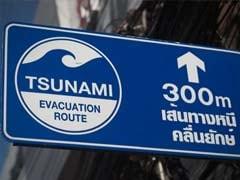 The Devastating 2004 Tsunami: Timeline