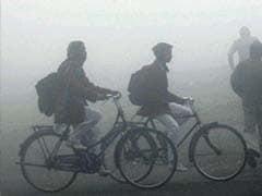 Winter Chill Reportedly Claims 125 Lives, Gets Harsher in Uttar Pradesh