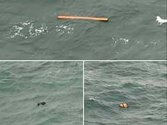 '2 Big Parts' of AirAsia Plane Found: Search Chief