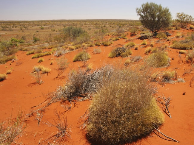 Australian Dies So Close to Help After Burning Outback Trek