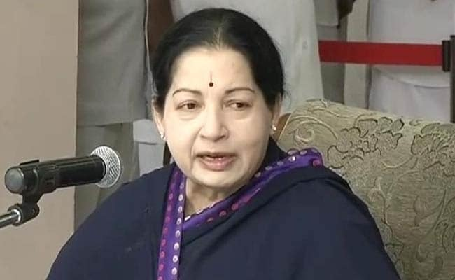 Amma Cement Added to Populist Schemes Named For Jayalalithaa
