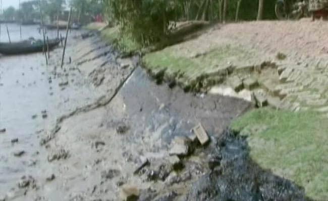 Bangladesh Lifts Ban on Cargo Boats After Sundarbans Oil Spill