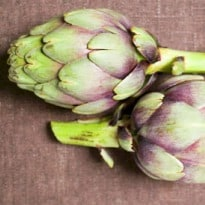 Why Globe Artichokes are Good for You