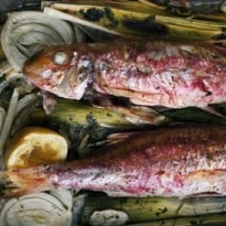 Nigel Slater's Fish Recipes