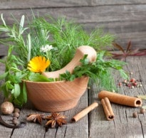 Nature At Your Service: Discover the Best Indian Herbs