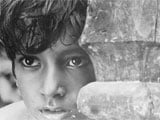 West Bengal celebrates Pather Panchali author's 118th birthday