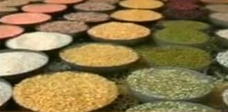 Government: 6,100 tonnes foodgrains reported to be damaged in 2010-11