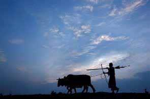 2012 will be a drought year: Met department
