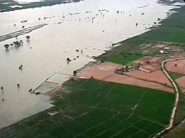 Video : Rains continue in Andhra Pradesh, 32 dead
