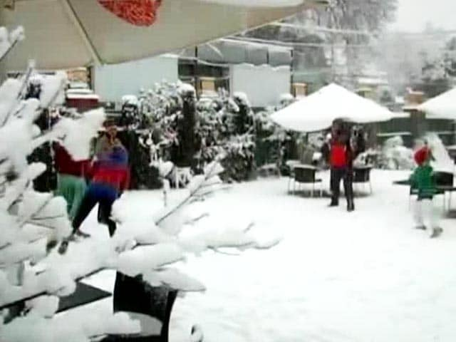 Video : White New Year for Kashmir as valley receives fresh snowfall