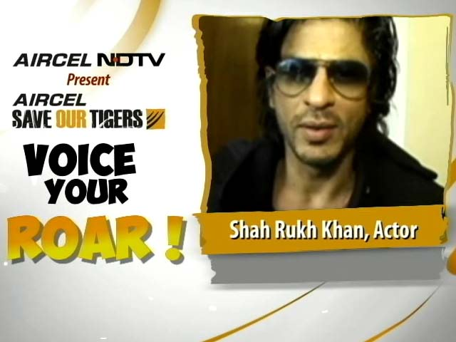Video : Join Shah Rukh Khan in the Fight to Save Our Tigers