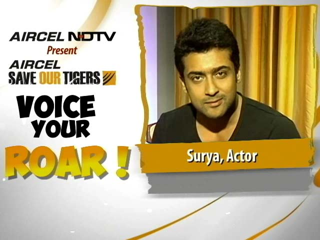 Video : Surya Voices his Roar to Save Our Tigers