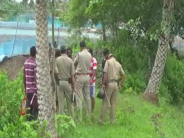 Video : 7-Year-Old's Body Found Hanging From Tree In Bengal