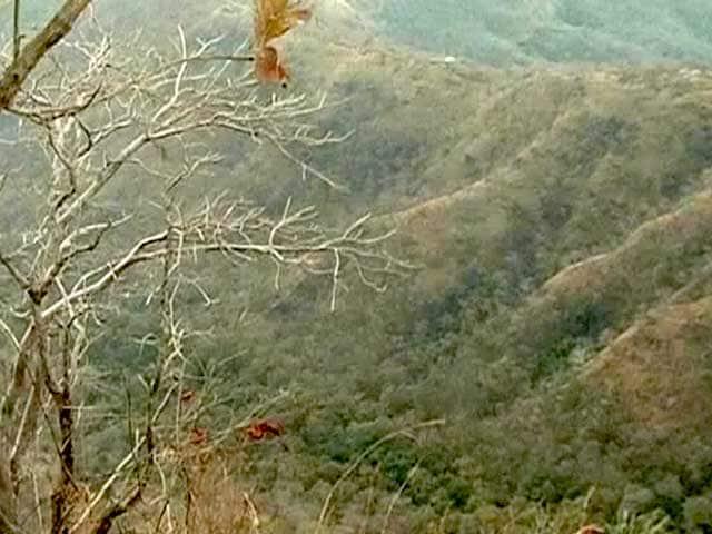Video : वन संरक्षण कानून में ढील से उठते सवाल