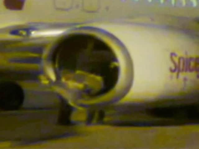 Video : सूरत एयरपोर्ट पर टेक ऑफ के दौरान विमान से टकराई भैंस