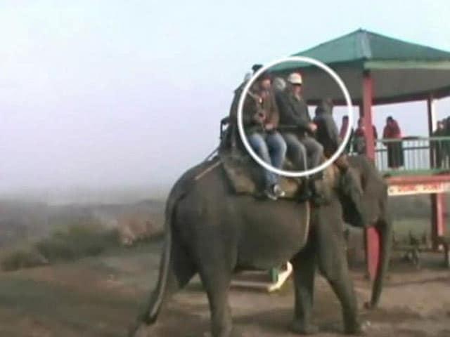 Video : As Assam Burned With Violence, Top Bureaucrat Enjoyed Elephant Rides