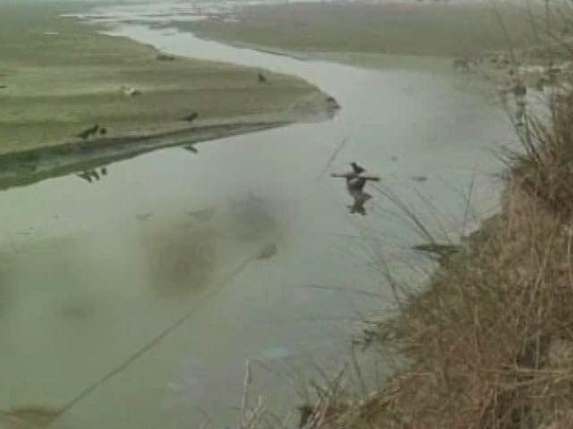 Video : Over 100 Dead Bodies Found Afloat in Ganga in Uttar Pradesh, Probe Ordered