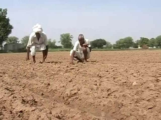 Video : Government Downgrades Monsoon Forecast, Stokes Fears of Drought