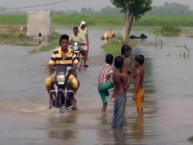 Video : भाखड़ा डैम से छोड़ा गया पानी, मोगा के कई गांवों में पानी घुसा