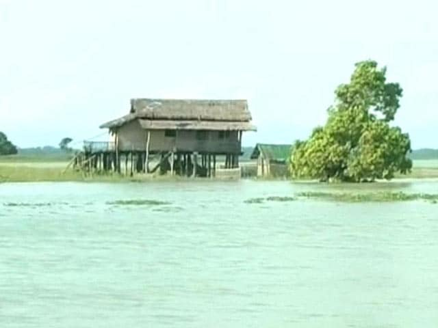 Video : As Assam Floods Worsen, How Guards at Kaziranga are Coping
