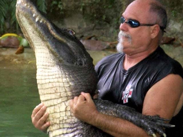 Video : Alligator Wrestlers Struggle to Keep Florida Tradition Alive