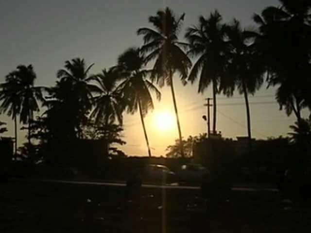 Video : Goa's Controversial New 'Super Law' Allows Tourism Inside Forests