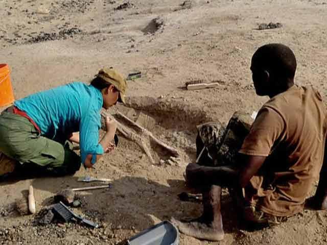 Video : Scientists Unveil Ancient Massacre in Kenya